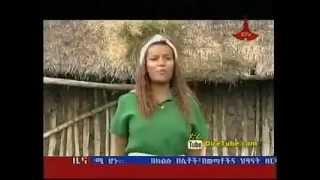 Tigist Addisu Yekolo Temari