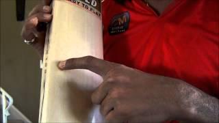 MB Malik Gold Cricket Bat