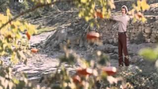 Пора красных яблок (1981) фильм смотреть онлайн