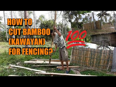 HOW TO CUT BAMBOO ( KAWAYAN) FOR FENCE