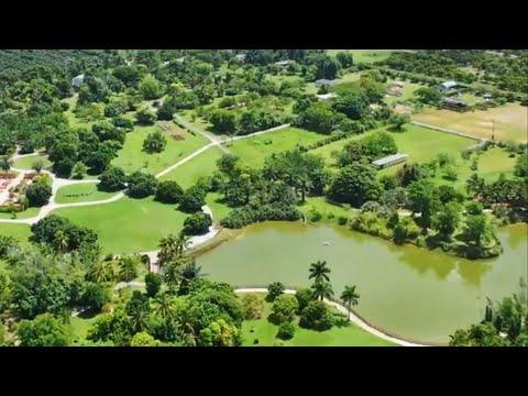 Fruit & Spice Park: One-Of-A-Kind Botanical Garden