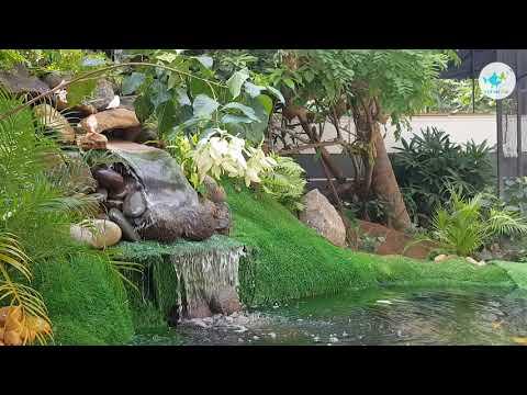ഞങ്ങളുടെ Birds Aviary യിലെ Beautiful Fish Pond Design...