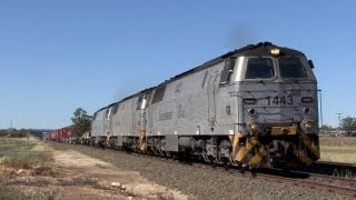 NSW Railways - Mungindi and Main Northern Lines: Australian Trains