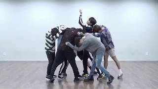 BTS FAKE LOVE mirrored Dance Practice MP3