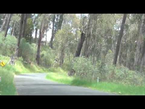 Kiandra - Cabramurra - Corryong Road, Kosciusko National Park, NSW