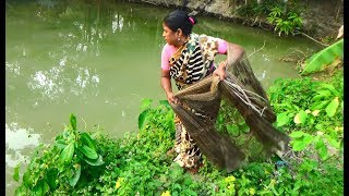 Net Fishing | Traditional cast net fishing in village | Fishing with cast net (Part-16)