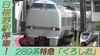 貫通扉が痛々しい(T_T) 289系特急「くろしお」新大阪行き 阪和線日根野駅停車!