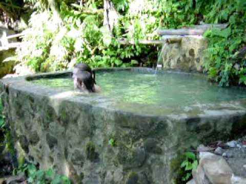 Watten Waven Hot Springs, Dominica
