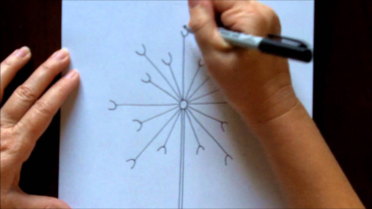 Scribble Drawing Tutorial : How to draw a dandelion easy free drawing tutorial for