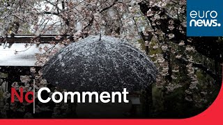 #Coronavirus Tokyo snow: Authorities hope snow will help keep Japanese at home