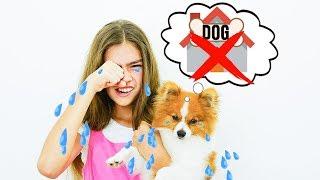 Nastya und Artem - eine Geschichte für Kinder über eine Hundehütte