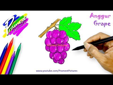 89 Gambar Apel Dan Anggur Terbaik