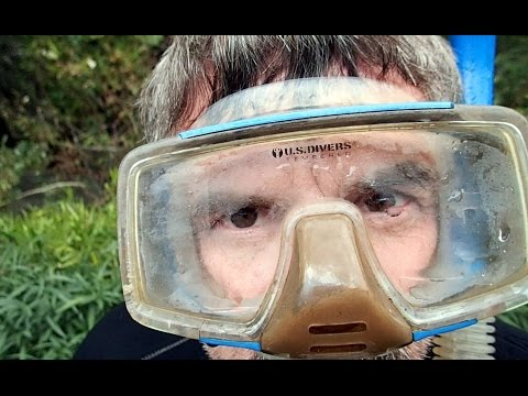 How To Stop Your Diving Mask From Fogging.