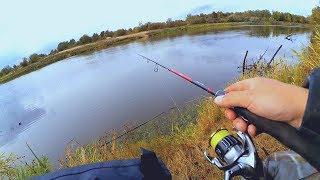 Речные коряги! Думал, что будет окунь, но клюнула щука... Спиннинг на реке осенью!
