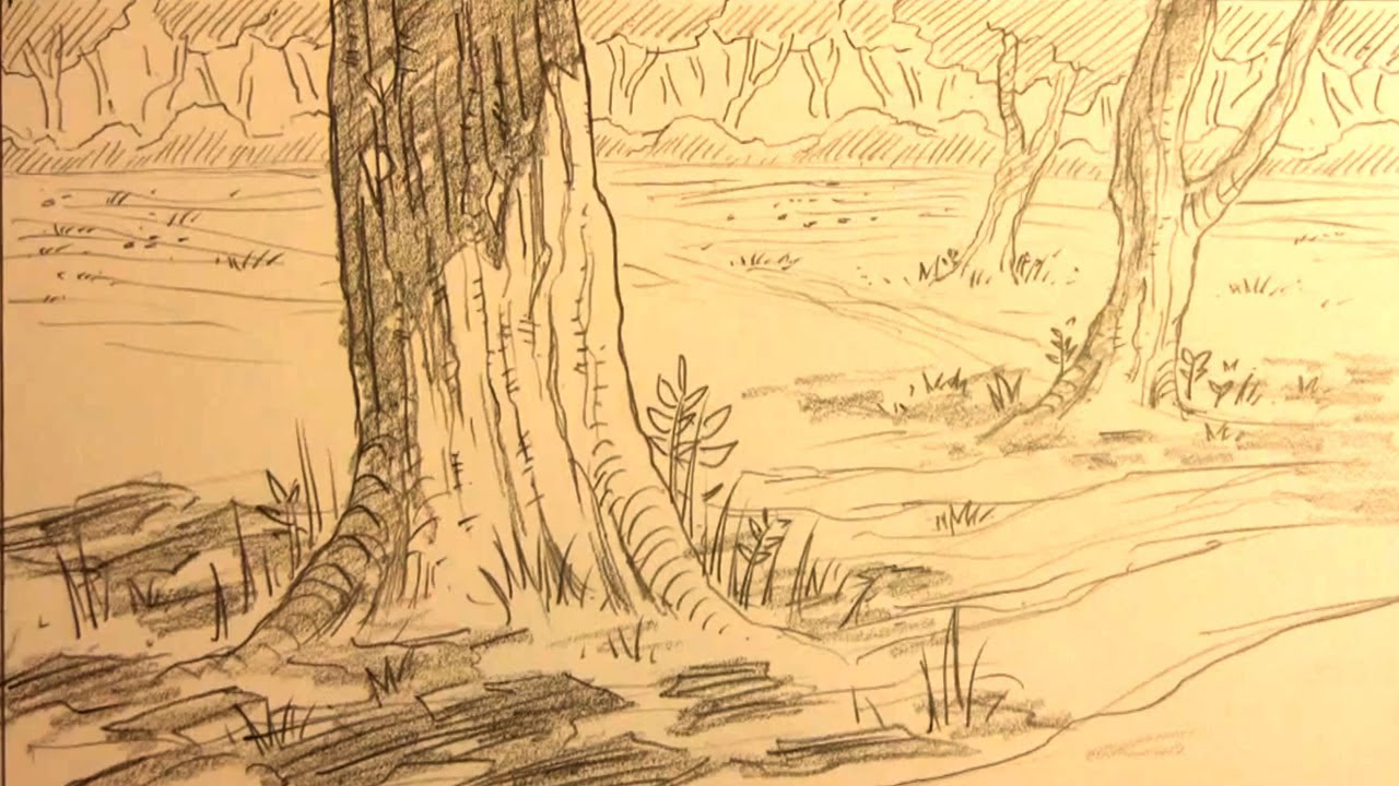 How to draw forest backgrounds for manga youtube - Sketch anime wallpaper ...