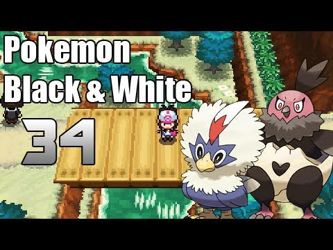 Pokémon Black & White - Episode 34 | Road To The Victory Road!