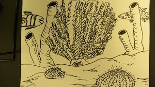 Kids Can Draw: Sea Urchin, Sea Sponge, and Fan Coral