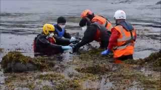 Pilot Whales Rescue, Staffin - Isle of Skye,  4 June 2015 Video by Sam Nicolson
