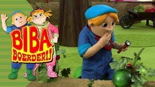 Bibaboerderij - De Troeteltomaat