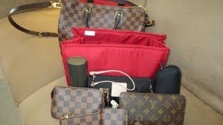 Louis Vuitton - Review of the Purse Bling Organizer for Speedy 30