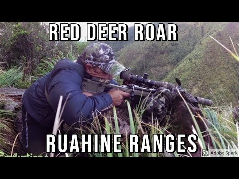 Red Deer - Roar 9 April 2017