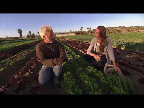 The Benefits of Organic, Sustainable Farming