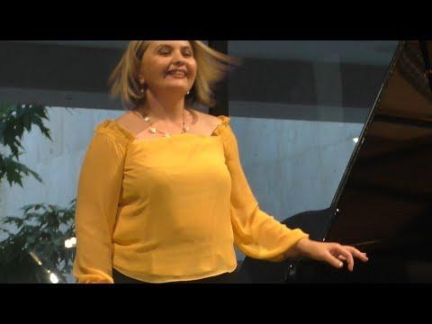 Благотворительный концерт, Yerevan, 04.08.19, Su, Video-3.
