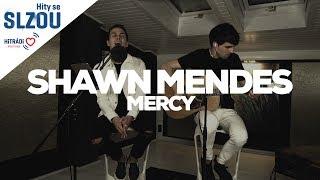 Mercy - Shawn Mendes (Hity se Slzou)