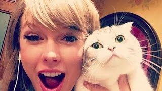 Taylor Swift - Funny Moments (All 2015★)