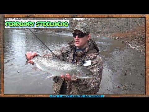 Download Youtube: February STEELHEAD fishing -  18 MILE creek ( Erie )