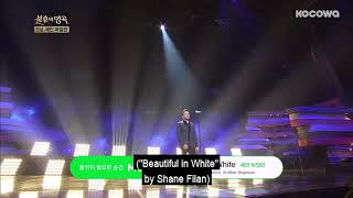 Beautiful in White live concert