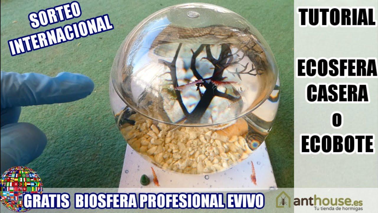 ECOSFERA CASERA + SORTEO INTERNACIONAL BIOSFERA eVivo de Anthouse.es | ECOBOTE Tutorial DIY