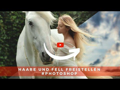 Haare & Fell Freistellen #Photoshop