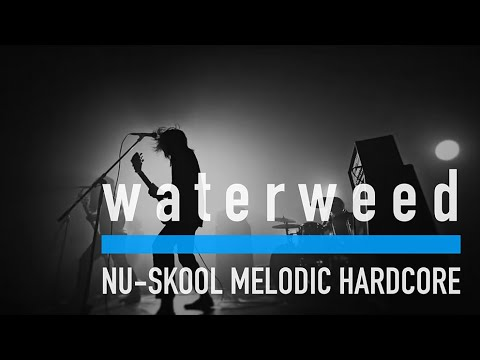 waterweed - 10 years (Music Video)