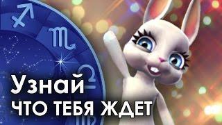 Смешная Зайка - гороскоп для ТЕЛЬЦОВ ♉. + Смешной прикол!