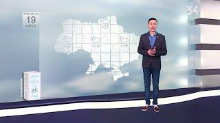 Погода на 19.10.2019