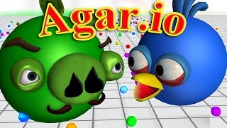agario with angry birds 3d animated game mashup funvideotv style