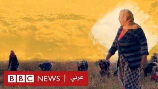 معاناة فلاحات تونس لتأمين لقمة العيش