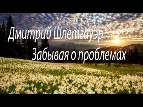 Дмитрий Шлетгауэр - Забывая о проблемах