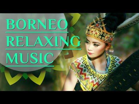 Borneo Relaxing Music