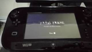 Is using an SSD for the Wii U worth it?