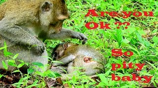 My heart so break cos pity baby, Very good mum try to cure injure , We can't closer wildlife baby