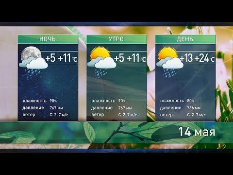 Прогноз погоды на 14 мая: тепло и грозы