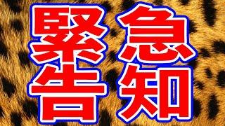 NMB48 緊急告知!