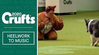 What does the fox say? Amazing dog dance routine at Crufts 2020
