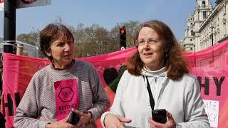 Baixar Interviewing Some Extinction Rebellion Activists in London