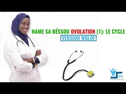 Hame sa beussou OVULATION : (1) LE CYCLE