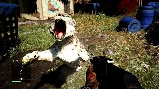 Far Cry 4 Gameplay - Snow Leopard Attack