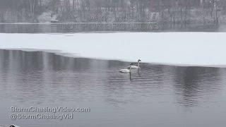 Rice Lake, WI Snow - 3/4/2016