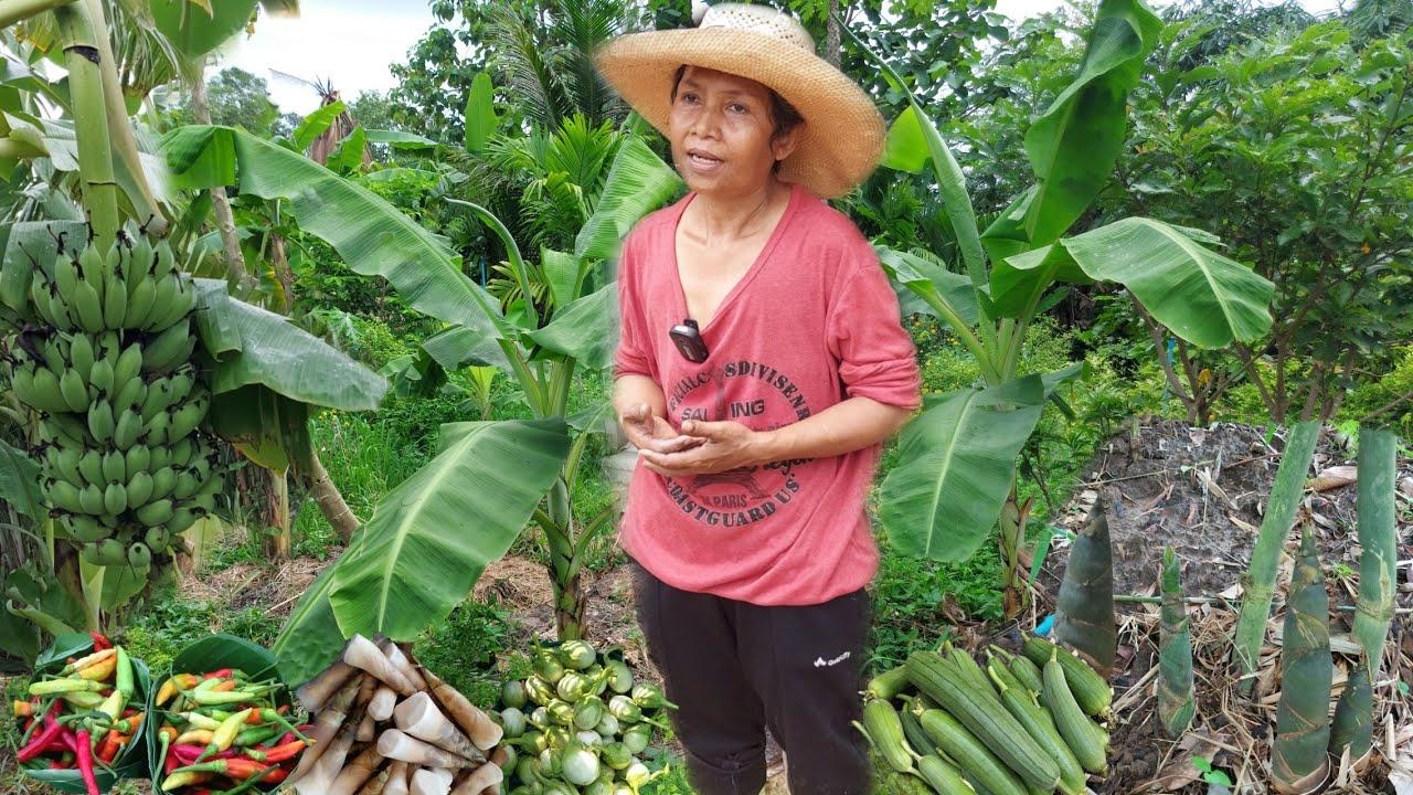 ยอดหญิง2021!!ทำเกษตรจนชนะมะเร็ง..มีรายได้หลักแสนต่อปี